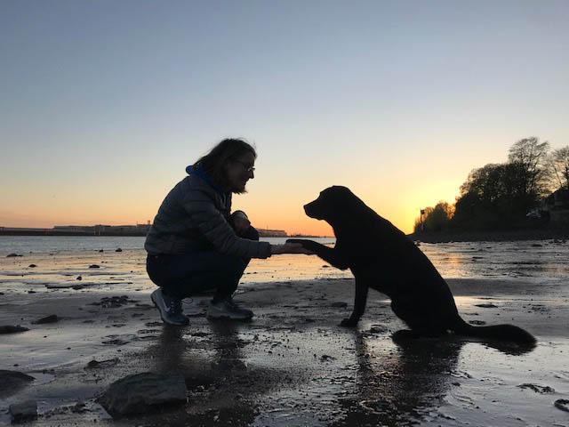 Kontakt Tierärztin Katrin Wüstmann